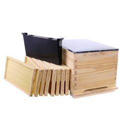 10 Frame Single Level Spring Split Kit - 8 wired & Waxed Frames + Assembled Lid & Base Plus Single Frame Feeder