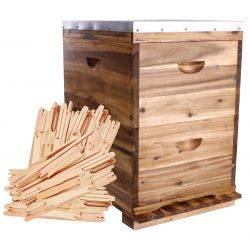 10 Frame Double Level Full Depth Acacia Beehive with 20 flat packed Frames -  Assembled Lid & Base