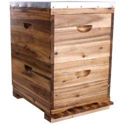 Double Level Full Depth Acacia Beehive, 10 Frame, No Frames.  Assembled Lid & Base