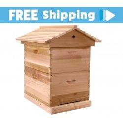 Assembled Bee Hive - Cedar Wood Gabled Lid - 10 Frame Full Depth double Beehive with Inner cover
